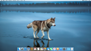 Husky OS X 10.11 by Dragon72