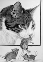 Cat with 3x mouse in Graphite nr 2 by mo62