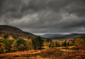 Cairngorm Hills at Braemar II by davidjearly