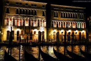 Shape Of Venice by gdphotography