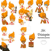 Blanc Chavalier - Pinpin  Expressions practice xD by Martyna-Chan
