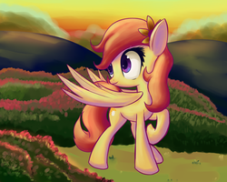 Request: Sunny Hooves by Mister-Markers
