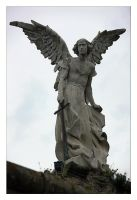 Angel, take 2 by cesalv