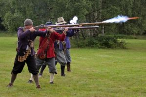 Cannock Chase Military History Weekend 2015 (33) by masimage