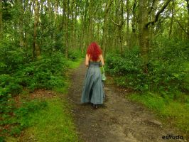 A Walk In The Woods by Estruda