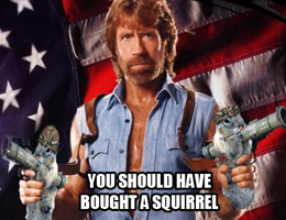 Chuck bought a squirrel by kai-pachi
