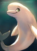 Beluga by OrcaOwl