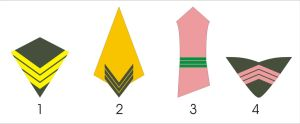 Aquilaan Army Greatcoat Patch Ideas by Ienkoron