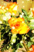 Yellow Roses by XDElisabeth69