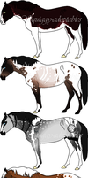 ~Horse Adoptables 1~ by Squiggy-Adoptables