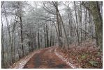 Where ever you may Roam - Chilhowee Mt Road by CrystalMarineGallery