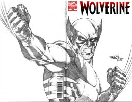 Wolverine Blank Cover by SheldonGoh