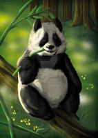 Panda in the forest by ELLRarte