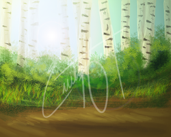 Birch Forest by PlumiiraCreature