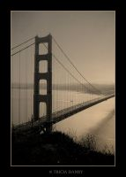 Golden Gate by Tricia-Danby