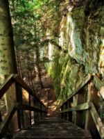 Descending Trail 2 by sixwings