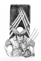 Wolverine claws by Shmeeizer