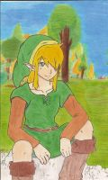 Link in a clearing in the fore by RobinSjupiter