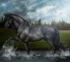 Gray Storm Coming - Finished YHH by KittycatNita