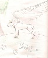 Wolf with wings :silverheart101 by raelynn109