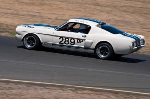 1966 Shelby GT-350 by SharkHarrington