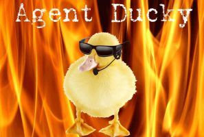 Agent Ducky by CaptainVendetta