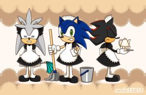 maid hedgehogs by sonic75619