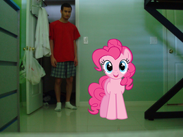 Me and Pinkie Pie by luisbonilla