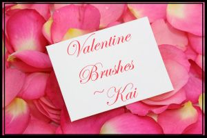 Valentine Brushes by KaiPrincess