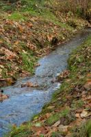 Blue Stream with Leaves by happeningstock