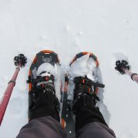 Snowshoes by iff11