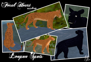 FH: Leopon Spots by Kirsui