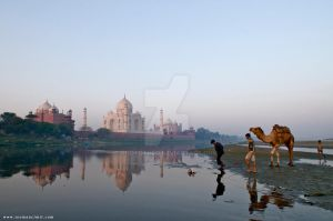 Taj Mahal Agra, India by phototheo