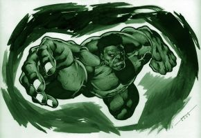 Hulk by marcelomueller