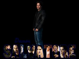 Damon Wallpaper 2 by angiezinha