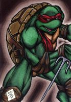 Raphael PSC by Foreman by chris-foreman