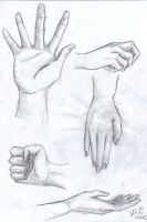 Hands by Mangamania13