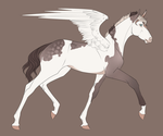 0192 Foal Design by MatrixPotato