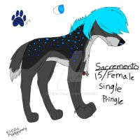 New sona Sacremento by Devils-Tea