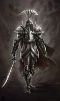 Noble armor by Akiman