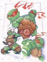 Turtles Marker Sketch by StevenSanchez