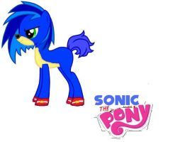 MLP: Sonic The Pony by mariokidd319
