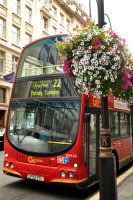 London bus and flowers 1 by wildplaces