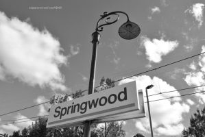 Light Me Up Springwood by Hipppiee