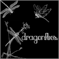 Dragonflies by butnotquite