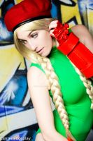 Micro Kitty Cammy 10 by CanteraImage