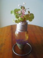 Light Bulb Vase 1 by Kosmu