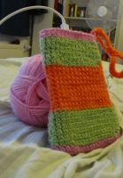 Crocheting Project 1: Mobile Bag by Daghrgenzeen