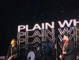 Plain White T's 1 by tay0934