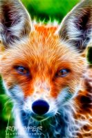 Red Fox: Fractalius Re-Edit by nerdboy69